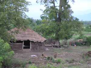 A hut where I interviewed the mother